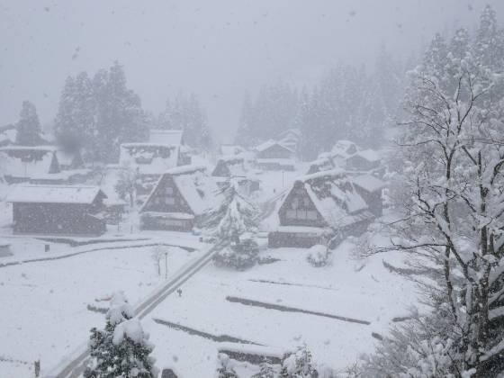 冬の相倉集落 - 雪が降る - いこ...
